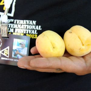 Golden Apricot Yerevan International Film Festival