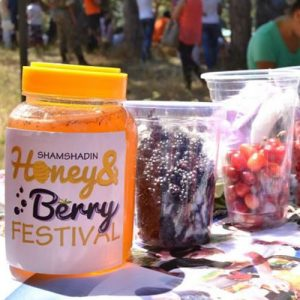 Honey & Berry Festival